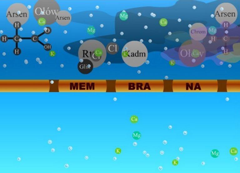 membrana osmotyczna
